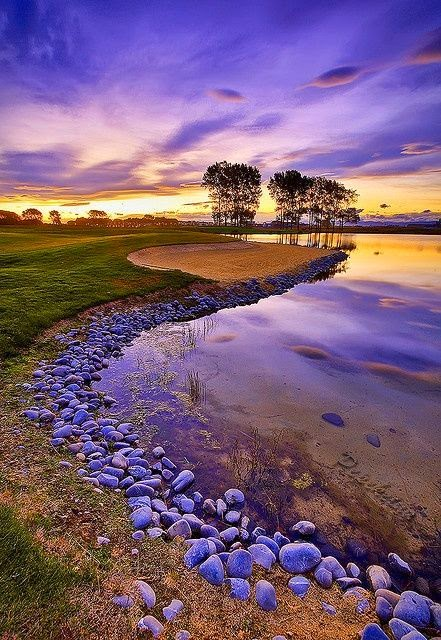 Stones, Trees and Bunker in Clearwater, New Zealand ""