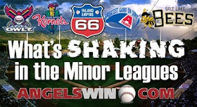 http://1.bp.blogspot.com/-aK2Ewig4M2I/T4HniSYObDI/AAAAAAAAABE/hlCej4exIyo/s1600/Minor-League-Report-2011.jpg