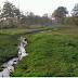 Nederlandse beken meanderen van nature niet of nauwelijks
