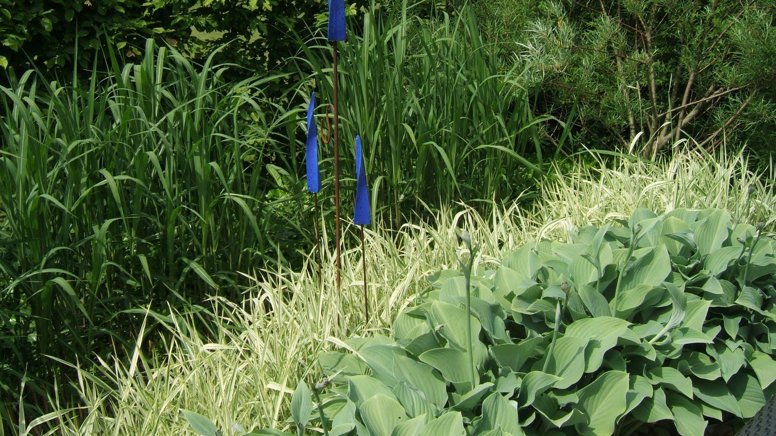 Cattis och eiras trädgårdsdesign: augusti 2011