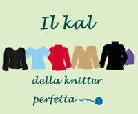Partecipate anche voi al kal della knitter perfetta