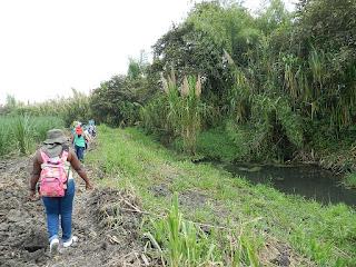 Intervencion SAG Sociacion de Agricultores y Ganaderos del Valle
