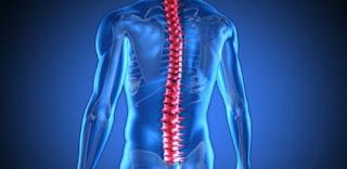 Pilates é indicado para casos de desvios posturais