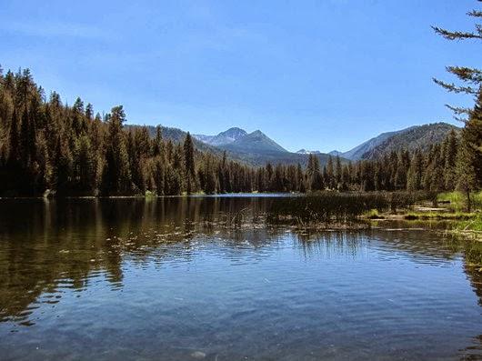 peaceful black pine lake