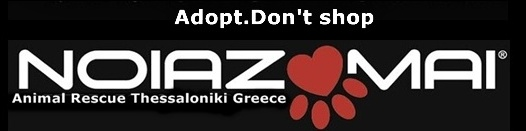 Noiazomai  -Animal rescue Thessaloniki-Greece