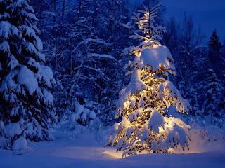 Download wallpaper pohon Natal unik