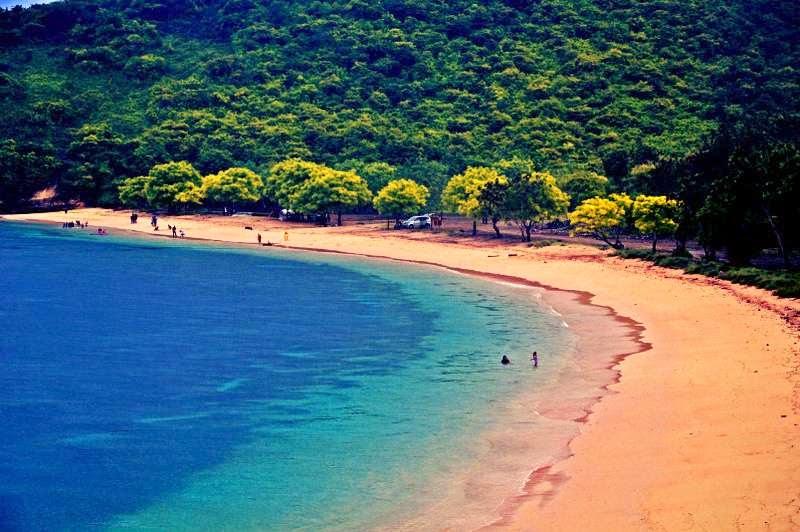 Pantai Pink, Lombok - 7 Cara Seru Untuk Dapatkan Liburan Murah