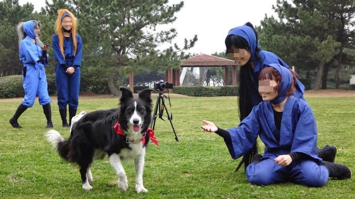 http://border-polly.blogspot.jp/2015/03/blog-post_30.html