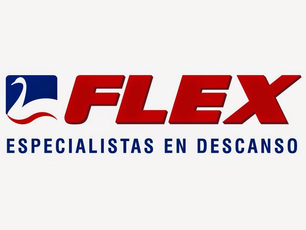 Logo Flex, nuevo catálogo 2014