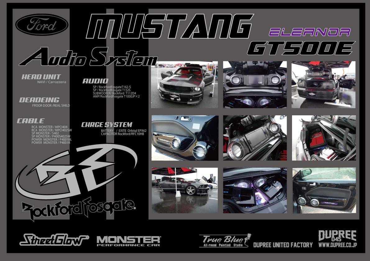 MUSTANG GT500E