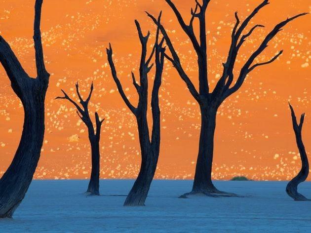 Parque Nacional de Namibia y Naukluft