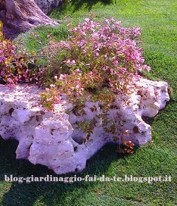 Mobili lavelli immagini di giardini rocciosi - Il giardino roccioso ...