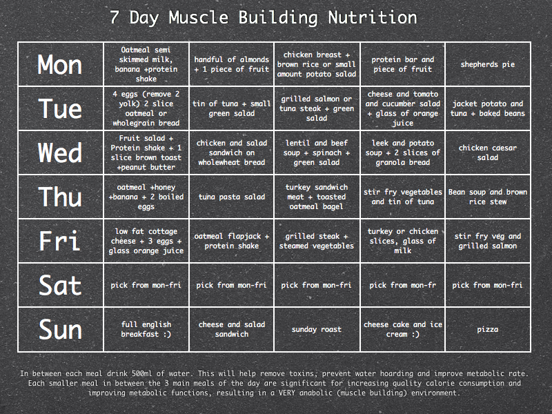Muscle gain diet program
