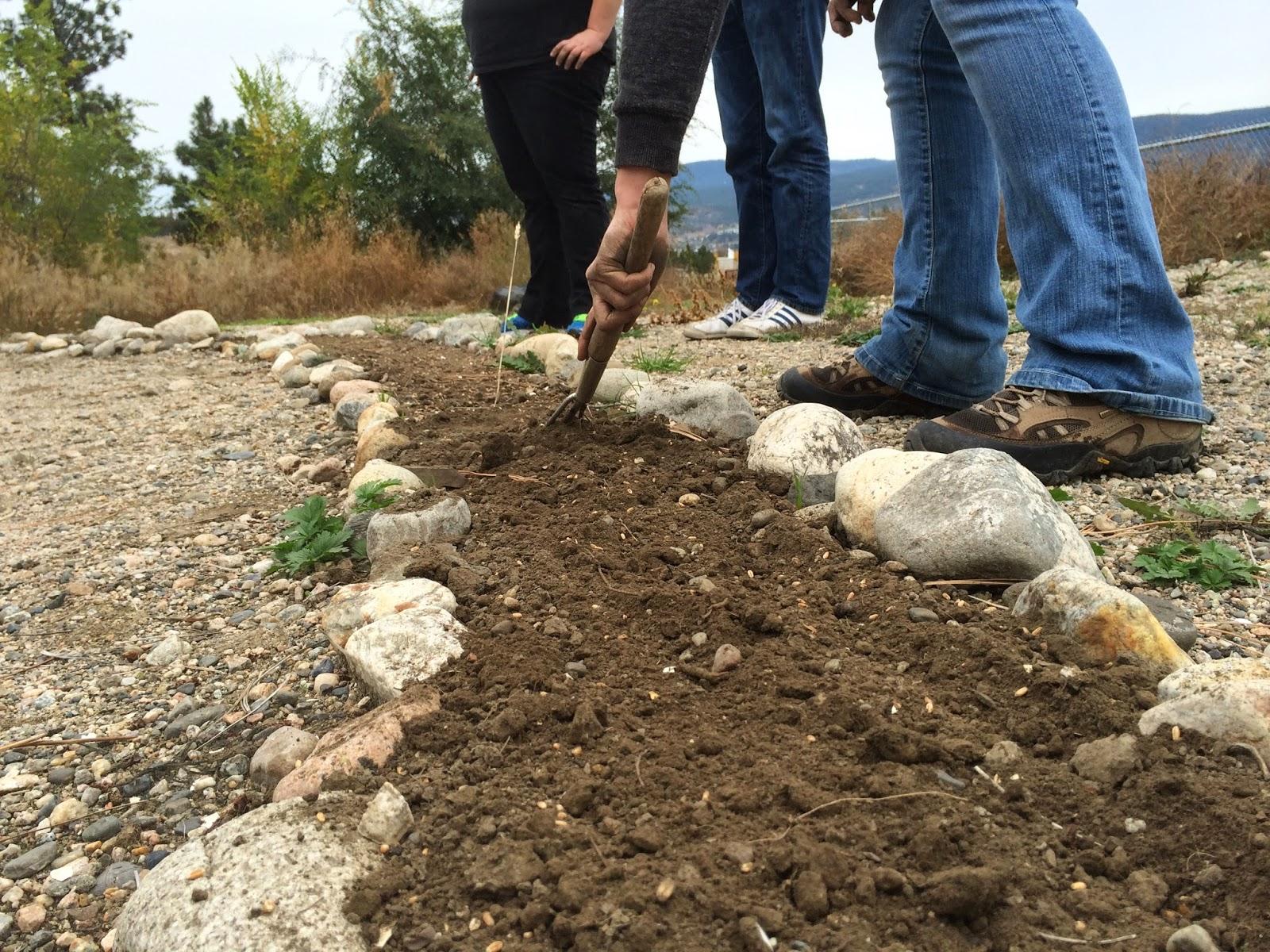 The Learning Garden: October 2014