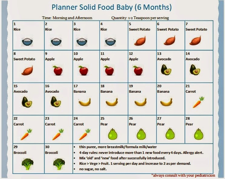 solid food untuk bayi 6 bulan