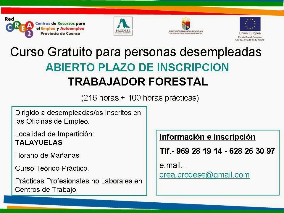 Blogempleo de cuenca curso de trabajdor forestal en - Horario oficinas bbva madrid ...