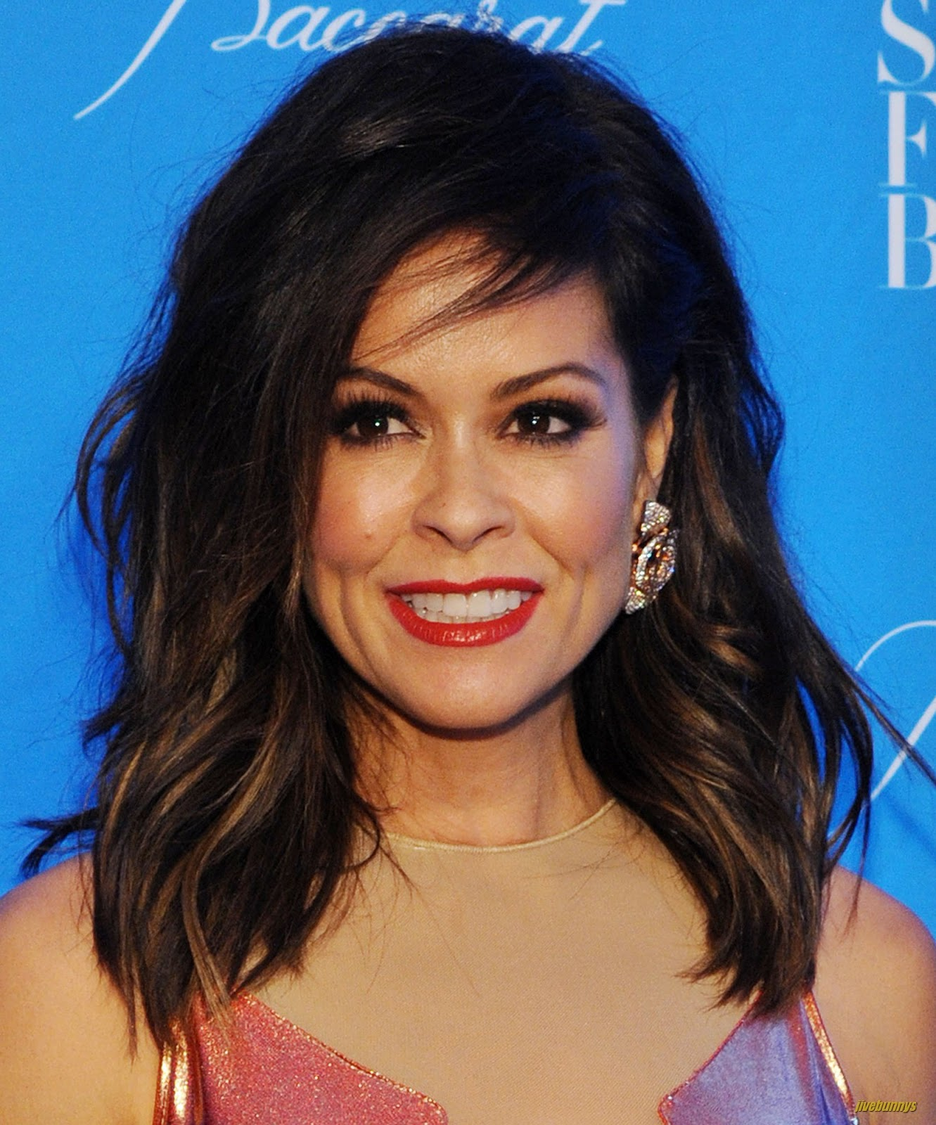 Jivebunnys female celebrity picture gallery brooke burke hq photo - Jivebunnys Female Celebrity Picture Gallery Brooke Burke
