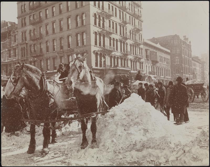 new york history geschichte the great blizzard februar 1899. Black Bedroom Furniture Sets. Home Design Ideas