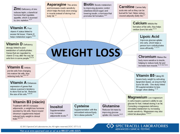 Family medical weight loss raleigh image 1