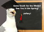 Ask Jeffery!