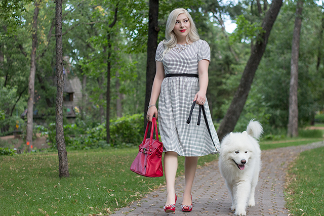 Window pane checkered dress with red purse and samoyed dog.