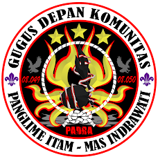 Logo PADRA
