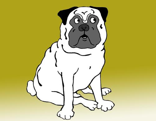 Salve Salve Simpatia - o cachorro emburrado