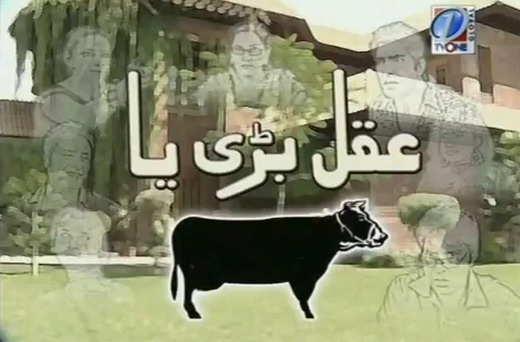 Watch All Pakistani Desi Comedy Serials On Dramacell ComDirector Ejaz