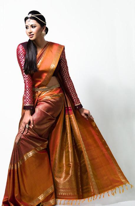 gayathiri wonderful saree ad collections 2012 unseen pics