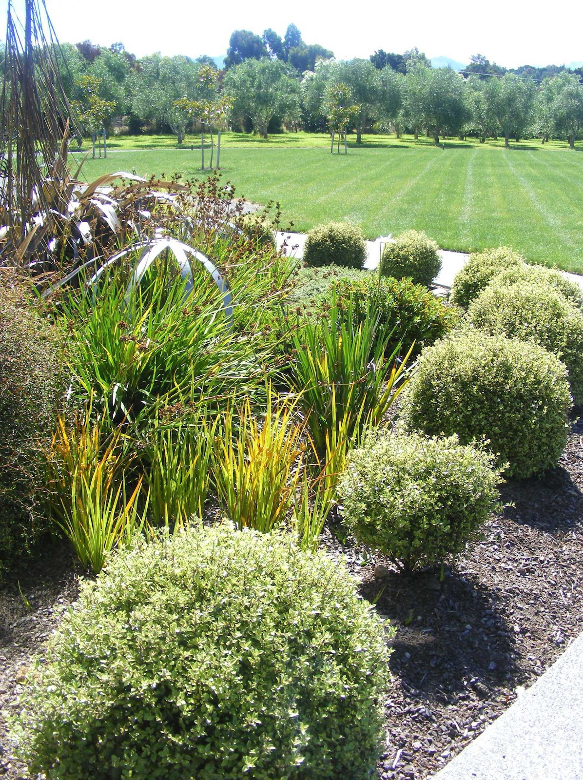 Rachel callaghan landscape architect nz upper plain for Native garden designs nz