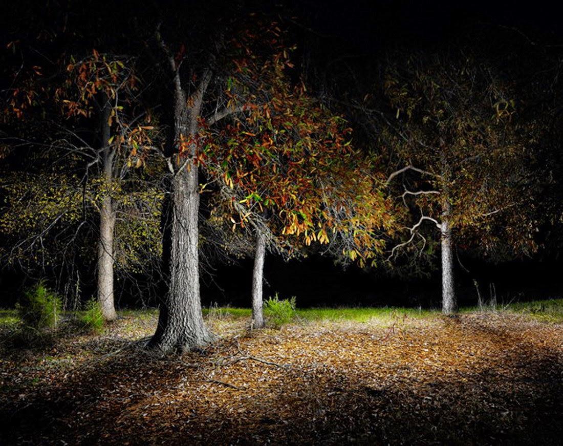 cuadros-paisajes-de-noche
