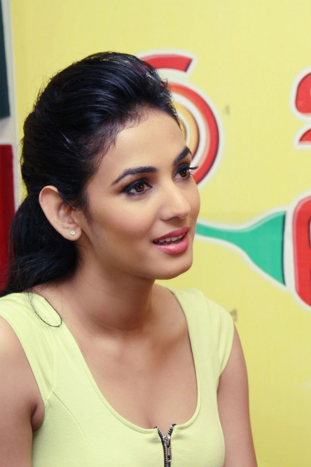 happy birthday to sonal chauhan - may 16 | hd wallpapers (high