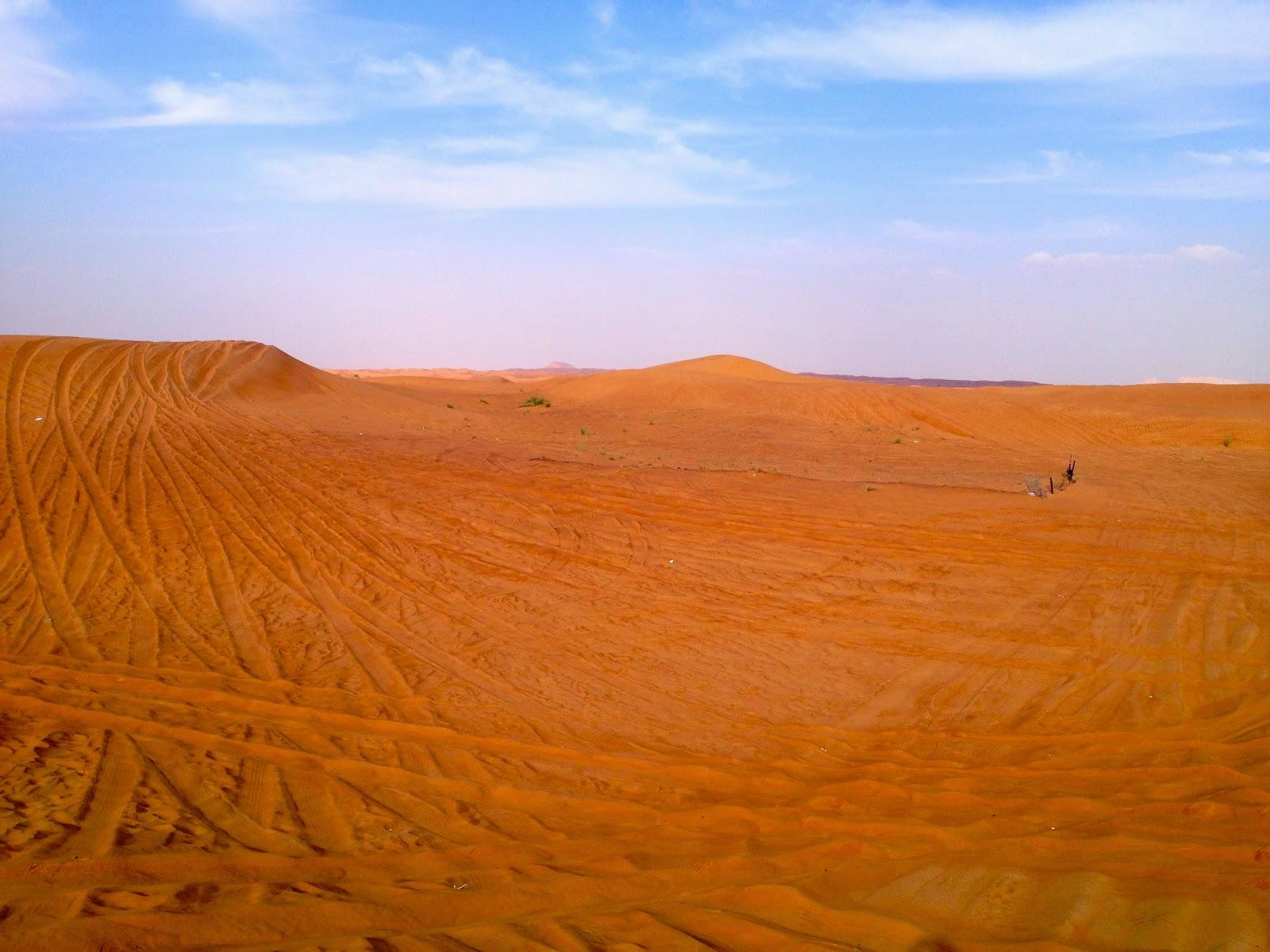 Dubai og dens vakre ørken