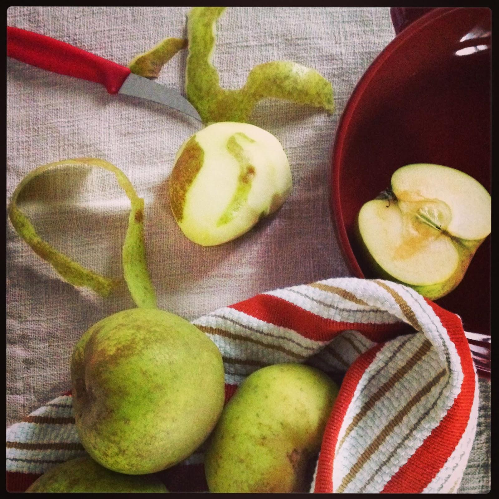 di certezze e della solita torta di mele (all' evo)