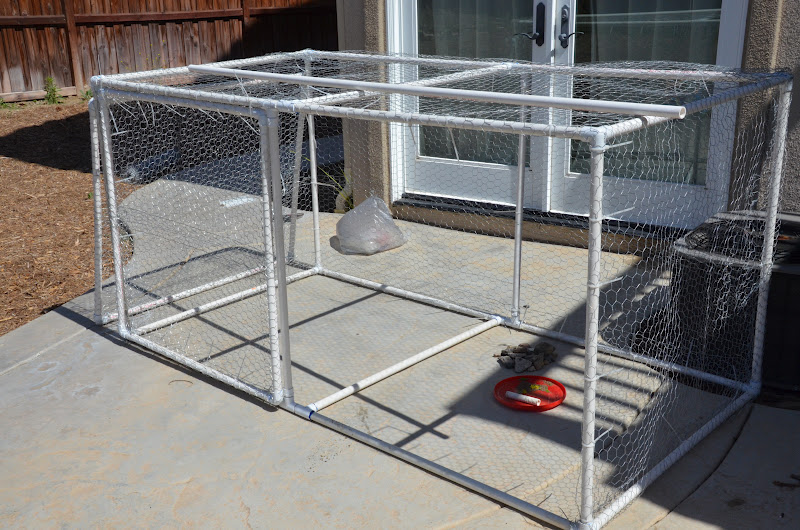 grated Square Foot Garden Hinged Door Cage