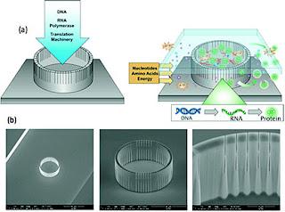 microscale enclosure with nanoscale pores