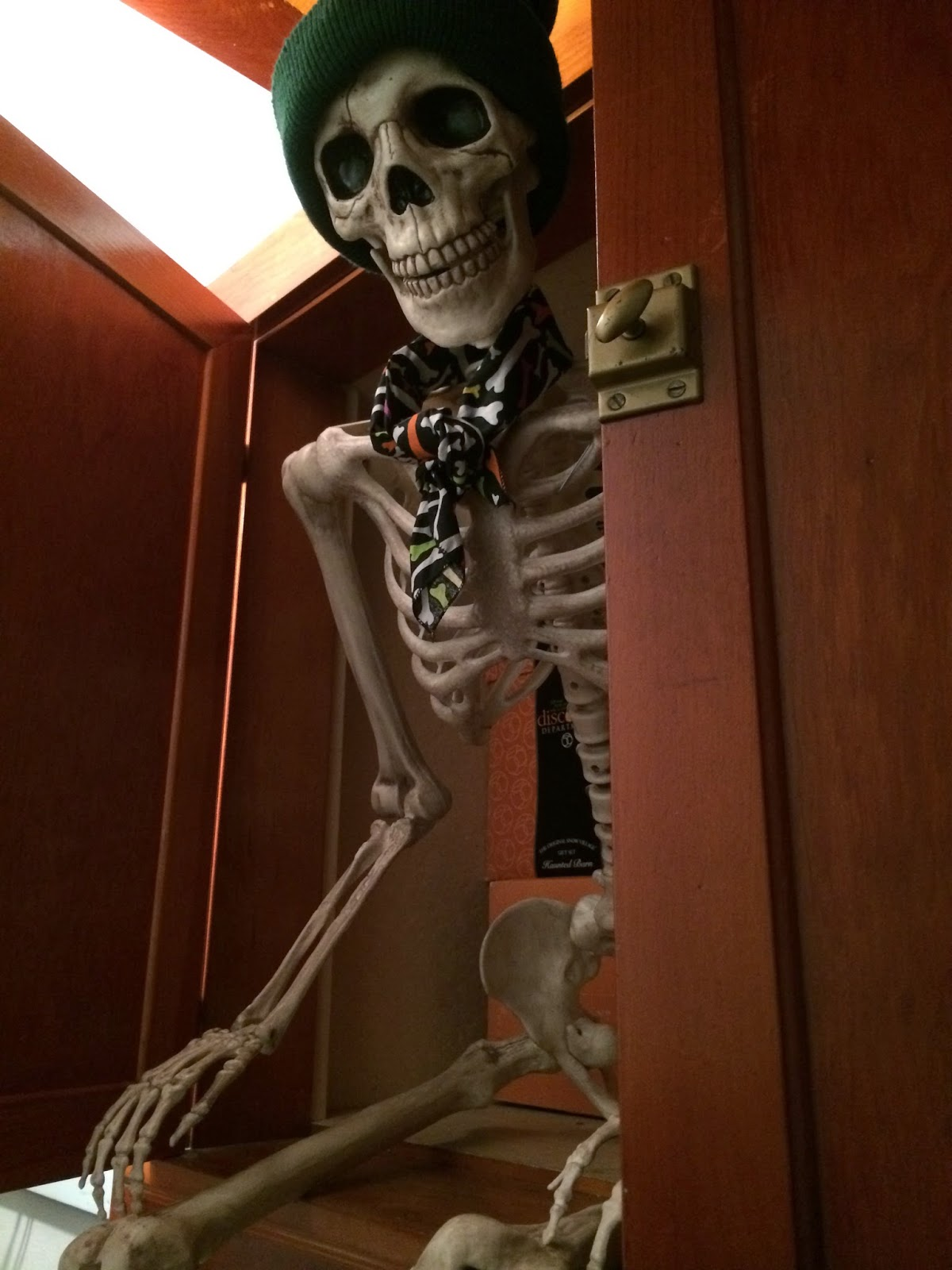 Image result for skeleton in the cupboard