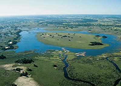 Okavango Delta Swamp in Botswana