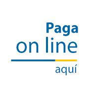 PAGO CON T.P.V.