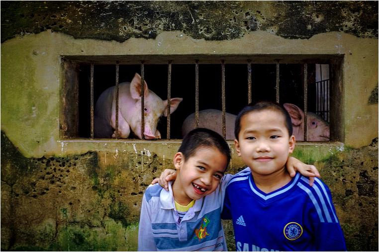 Compact Camera, Best Photo of the Day in Emphoka by Hùng Vũ, Fujifilm FinePix X100, https://flic.kr/p/n2QAQ6