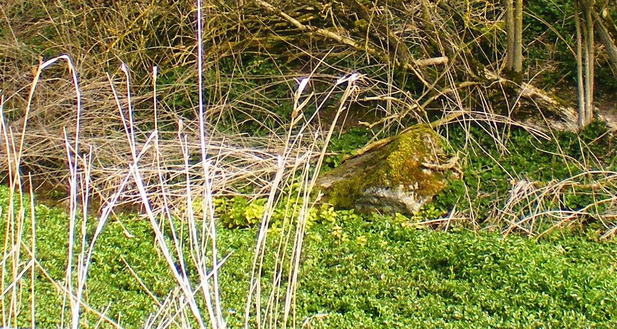 Waden Mound Sarsen Stones
