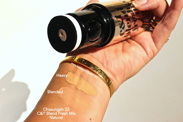 chosungah 22 c&T blend fresh mix foundation swatches