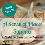 Summer Journal eCourse
