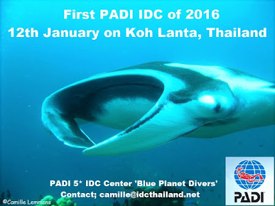 Next PADI IDC starts 12th January 2016 on Koh Lanta, Thailand