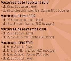 Stages de Cirque 2018 - 2019