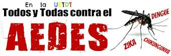 Mantén al mosquito Aedes a raya