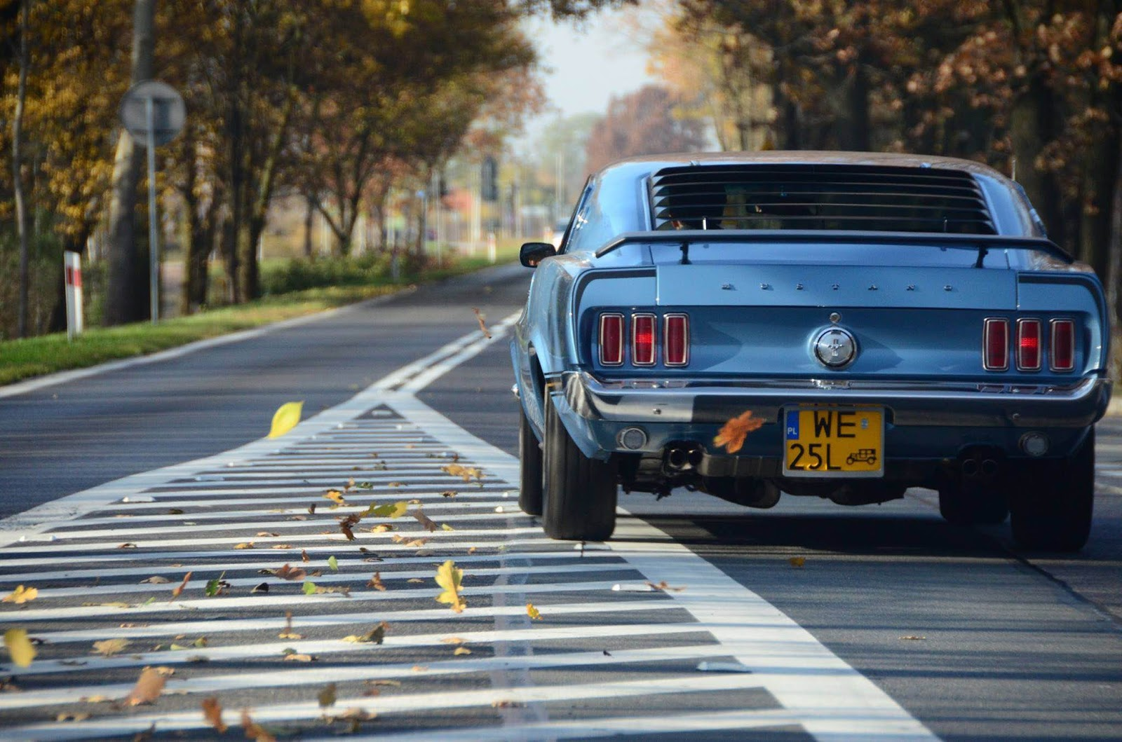 Opinion, Spank in car fantasy