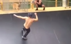 Skateboarder Fails Off Dog Cage