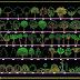 แจกฟรีบล๊อค AutoCAD ต้นไม้ Free Block Tree AutoCAD