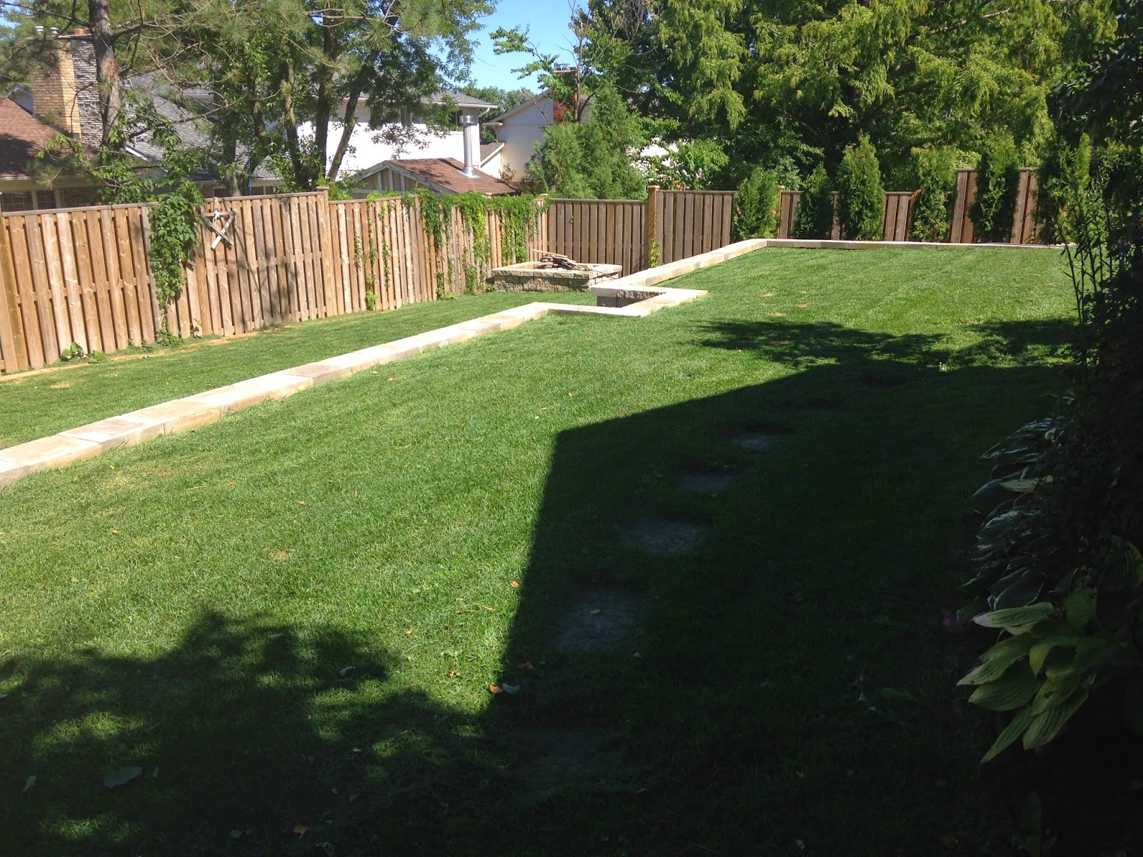 Backyard Before & After